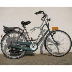 Spartamet Dlx - rower z silnikiem spalinowym Sachs 301A